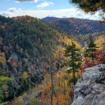 We love where we live! There is still plenty of color happening in Burke County, come check it out for yourself!   #BurkeTreasures #linvillegorge #linvillegorgewilderness #nofilter #fallfoliage
