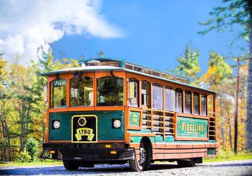 Trolley-6.jpg