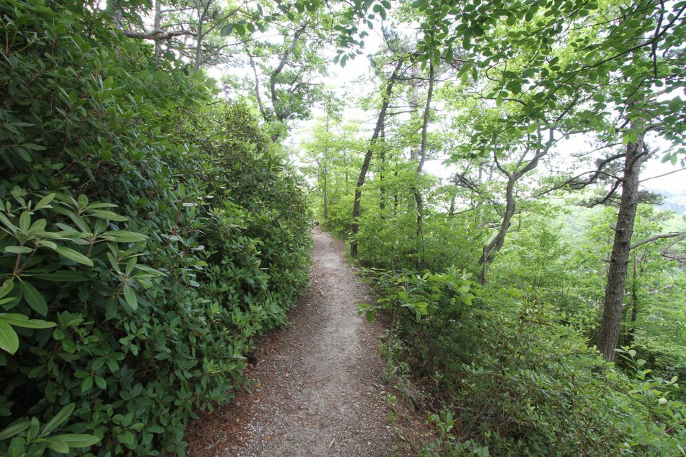 Burke County Nature
